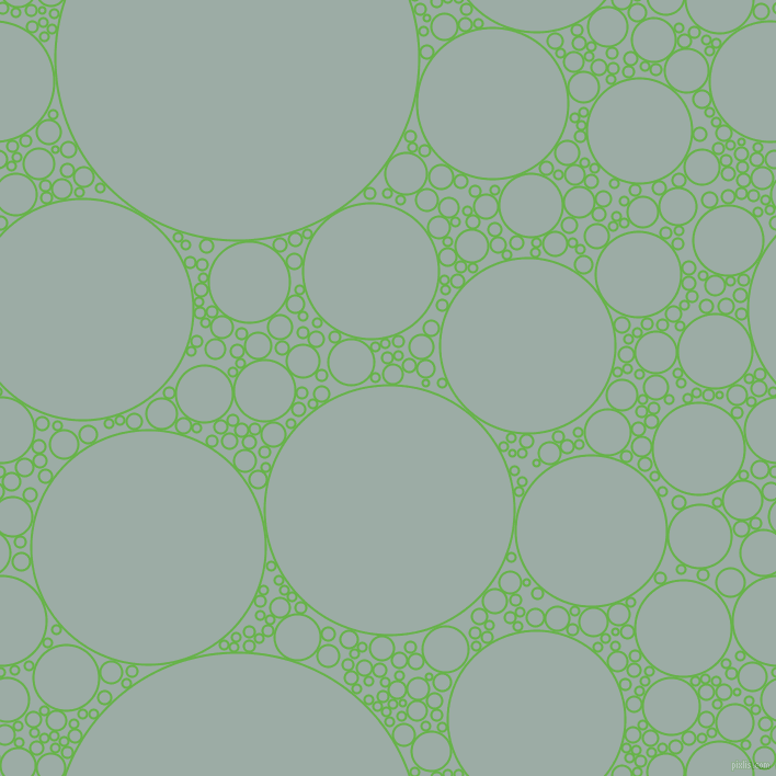 bubbles, circles, sponge, big, medium, small, 2 pixel line width, Apple and Tower Grey circles bubbles sponge soap seamless tileable
