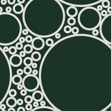 bubbles, circles, sponge, big, medium, small, 9 pixel line width, Black Haze and Cardin Green circles bubbles sponge soap seamless tileable