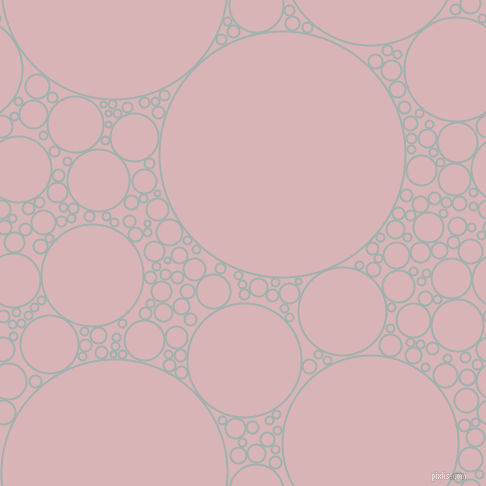 bubbles, circles, sponge, big, medium, small, 2 pixel line width, Conch and Pink Flare circles bubbles sponge soap seamless tileable