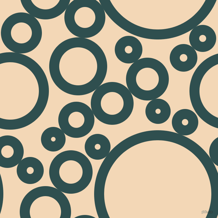 bubbles, circles, sponge, big, medium, small, 33 pixel line width, Dark Slate Grey and Pink Lady circles bubbles sponge soap seamless tileable