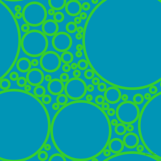 lime green and bondi blue circles bubbles sponge soap