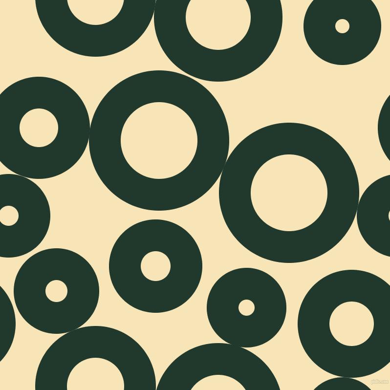 , circles, sponge, big...