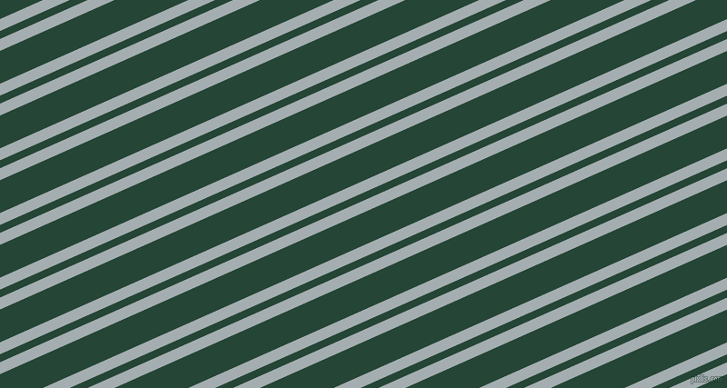 24 degree angle dual stripes lines, 12 pixel lines width, 8 and 33 pixel line spacing, dual two line striped seamless tileable