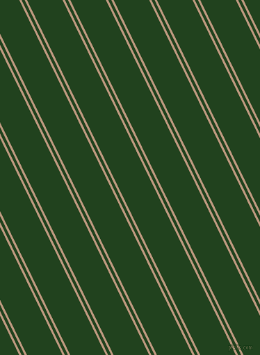 116 degree angles dual striped lines, 3 pixel lines width, 4 and 46 pixels line spacing, dual two line striped seamless tileable