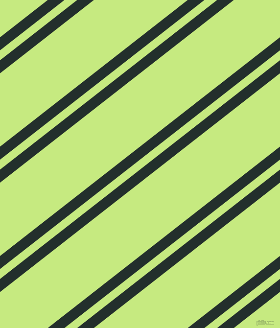 38 degree angles dual stripe lines, 21 pixel lines width, 16 and 118 pixels line spacing, dual two line striped seamless tileable