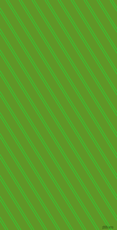 122 degree angle dual striped line, 2 pixel line width, 4 and 28 pixel line spacing, Lime Green and Limeade dual two line striped seamless tileable