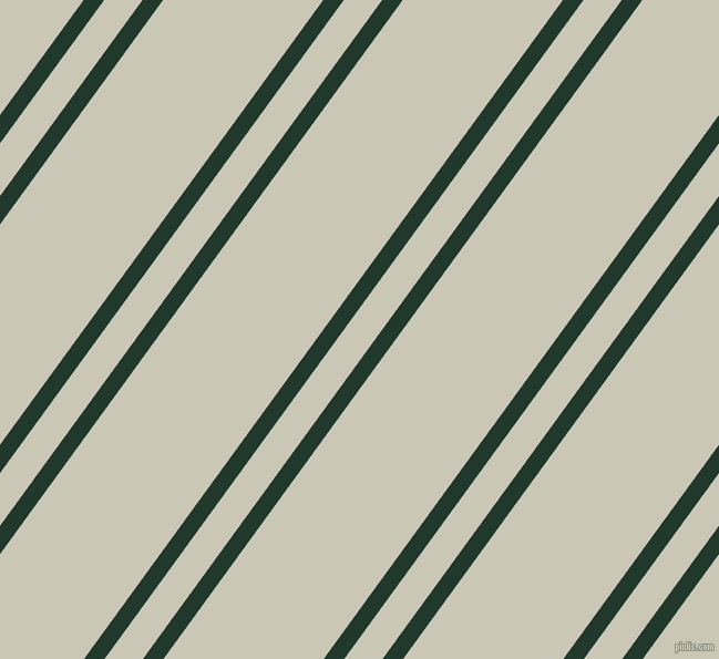 54 degree angles dual stripe lines, 15 pixel lines width, 28 and 117 pixels line spacing, Palm Green and Chrome White dual two line striped seamless tileable
