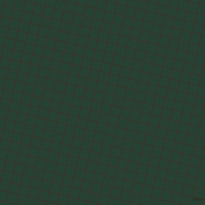 76/166 degree angle diagonal checkered chequered lines, 3 pixel lines width, 31 pixel square size, Graphite and English Holly plaid checkered seamless tileable